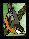 nuthatch by green-olivine