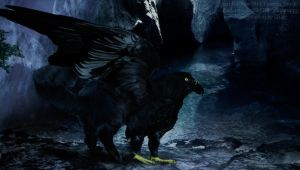 Black gryphon by Channeling-Spirits