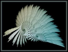 Fine Feathers by Thelma1