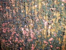 Texture: Grunge 2 by Stock-By-Crystal