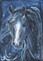 ACEO Midnight Pony by estellea