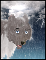 Storm and Rain by KillerSandy