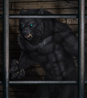 Werewolf Wednesday 1-30-13 by Viergacht