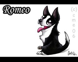 Romeo by cme