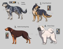 Auction- dog designs CLOSED by Nekno-Designs
