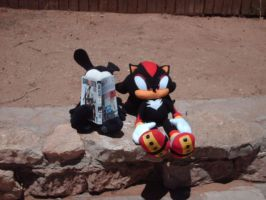 Shadow and Oswald in New Mexico by JudgeChaos