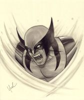 Wolverine Marker Sketch by Protokitty
