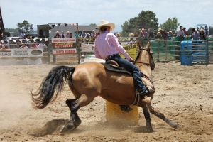 Taupo Rodeo 172 by Sooty-Bunnie