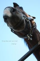 I look up by Kristy-Kitty