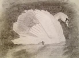 Just_A_Swan by LikeTheKid