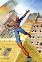 spiderman color 3 by stevesafir