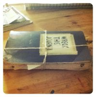 Wreck this journal 25 by Thomnommonster