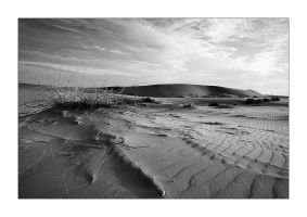 Desert IV by waleed-DP
