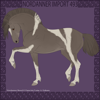 Nordanner Import 493 by Dollyrawr