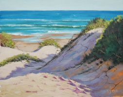 Beach Dunes and surf by artsaus