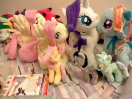all my MLP FIM plushies by Browntown747