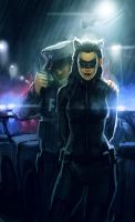Nolan's Catwoman by TheBoyofCheese