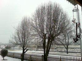 Winter storm 3 by Booklover198273