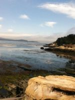 Pebble Beach Lodging View by CookiesRmine