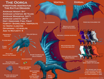 Oorga Species Sheet by Naeomi