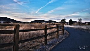 The Park Road-HDR by sintar
