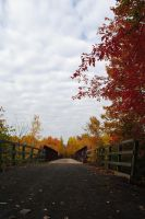 fall 2015 - 04 by LucieG-Stock