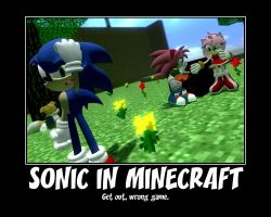 Sonic MineCraft Motivational by GlitchyProductions