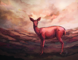 crimson doe by Saluhin