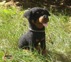 Needle felted Rottweiler by WoolArtToys