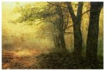 Forest Painting by Gwynhale