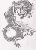Chinese Dragon by terminatress