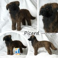 Needle felted berger by Cemina