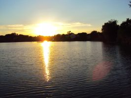 Sunlit Pond by highlyimprobable