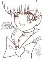 Smile Sailor Venus by manuelquetz