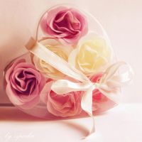 Rose heart box by ziperka
