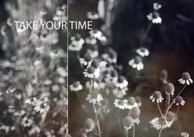 .Take your time by tgphotographer