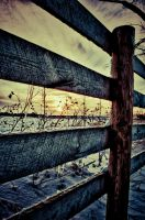 Fence by runyouknow1