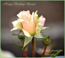 Happy Birthday Brenda by CaryAndFrankArts