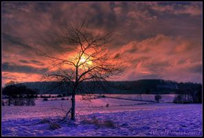 Out Of This World by allym007