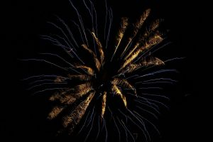 Blue and White Spider Fireworks by AlpoArts
