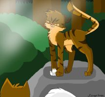 .: Tigerstar :. by SilverKitti