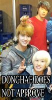 DONGHAE DOES NOT APPROVE by sujudork602