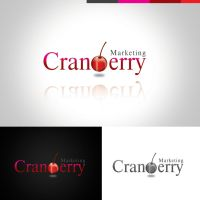 CRANBERRY CONCEPT 2 by 11thagency