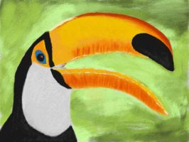Toucan by VATalbot