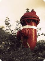 Red Fire Hydrant by KristineAdelia