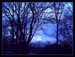 Blue Sunset 1 by Art-nPhotos-byRachel