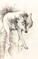 Wolf by missclumsysamurai