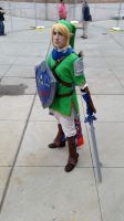 Hyrule Warriors Cosplay2 by SaphrisZora