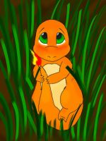 wild charmander appears by AngeloNero