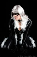 Spiderman: BlackCat Cosplay by Yukilefay